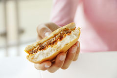Hamburger in der Hand lizenzfreie stockbilder