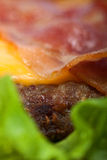 Hamburger detail. Detail of hamburguer with salad Stock Photography