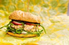 Hamburger di color salmone Immagini Stock Libere da Diritti