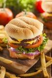 Hamburger do queijo da carne com tomate da alface Imagem de Stock Royalty Free