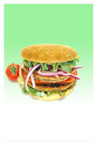 Hamburger do vegetariano Foto de Stock