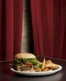 Hamburger e fritadas americanos Foto de Stock