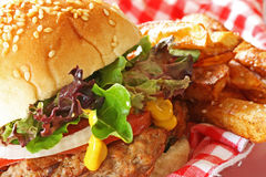 Hamburger e fritture Fotografia Stock Libera da Diritti
