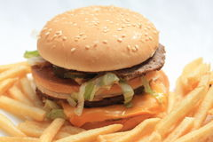 Hamburger e patate fritte Fotografie Stock