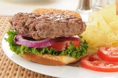 Hamburger e primo piano dei chip Immagine Stock Libera da Diritti