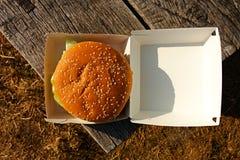 Hamburger in een doos Stock Afbeeldingen
