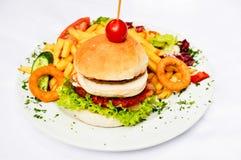 Hamburger en aardappelgebraden gerechten Royalty-vrije Stock Fotografie