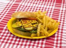 Hamburger en gebraden gerechten op picknick Royalty-vrije Stock Fotografie