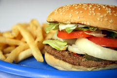 Hamburger et fritures Image libre de droits