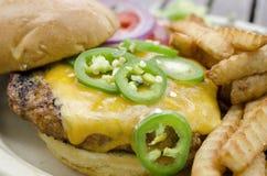 Hamburger et fritures de fromage images stock