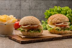 Hamburger fait maison de veggie Image stock