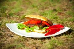 Hamburger frais avec des légumes d'une plaque blanche Image libre de droits