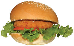 Hamburger frais de poulet Photo libre de droits