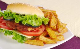 Hamburger with French Fries Royalty Free Stock Photos