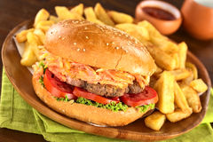 Hamburger with French Fries Stock Images
