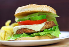 Hamburger with French Fries Stock Photo