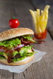 Hamburger with french fries Royalty Free Stock Photography