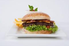 Hamburger fresco com batatas fritas e salada Imagens de Stock