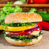 Hamburger with fresh vegetables Stock Image
