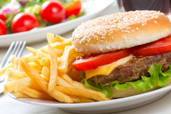Hamburger with fries Royalty Free Stock Photos