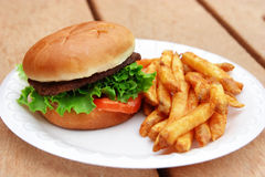 Hamburger and fries Royalty Free Stock Image