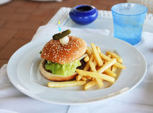 Hamburger and french fries plate Royalty Free Stock Photos