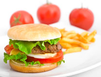 A hamburger with fries on a white plate Stock Photos
