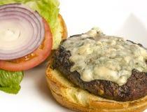 Hamburger gastronome de fromage photographie stock libre de droits