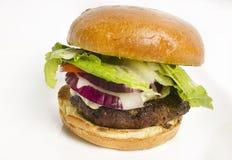 Hamburger gastronomico del formaggio Fotografie Stock Libere da Diritti