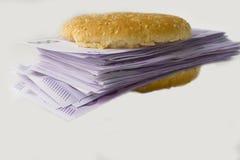 Hamburger gefüllt mit Eurogeld Stockbilder