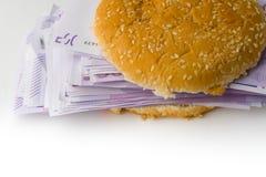Hamburger gefüllt mit Eurogeld Stockfotos