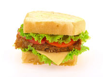 Hamburger grande Fotos de Stock Royalty Free