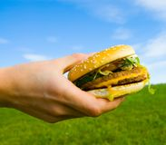 Hamburger in hand. Hand holds a hamburger on the background field and sky stock photo