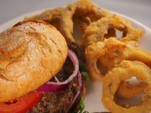 Hamburger i cebulkowi pierścionki zdjęcia royalty free