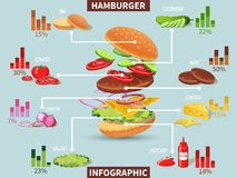 Hamburger ingredients infographic Royalty Free Stock Image