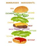Hamburger ingredients set Stock Image