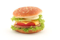 Hamburger isolated on white. Background stock image