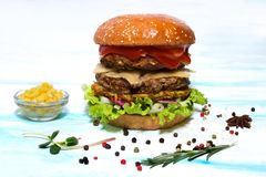 Hamburger juteux de boeuf avec du fromage, la pomme de terre et la salade d'un plat blanc Vue de côté photographie stock