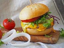 Hamburger juteux et délicieux Image stock
