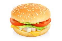 Hamburger kanapka odizolowywająca Fotografia Royalty Free