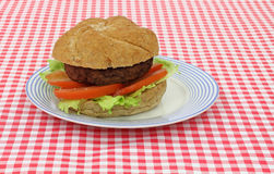 Hamburger with lettuce tomato Royalty Free Stock Photo