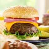 Hamburger meal Royalty Free Stock Images