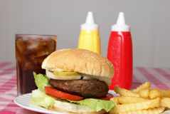 Hamburger Meal. A freshly cooked hamburger and fries meal on a checkered tablecloth Royalty Free Stock Images