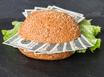 Hamburger met dollarbankbiljetten Royalty-vrije Stock Foto's