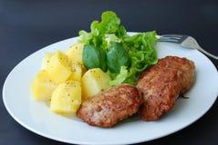 Hamburger met groente, salade Royalty-vrije Stock Afbeelding
