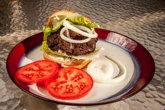 Hamburger met het bevestigen Stock Foto's