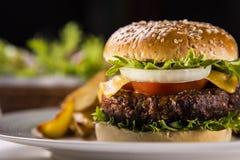 Hamburger met salade en aardappels stock afbeeldingen