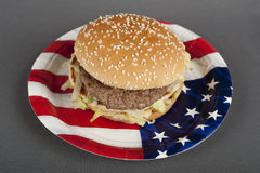 Hamburger On Paper Plate America Style Stock Images