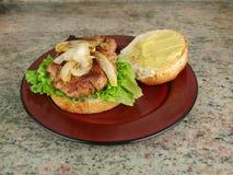 Hamburger op broodje Stock Foto's