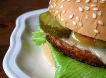 Hamburger op een Plaat Royalty-vrije Stock Afbeeldingen